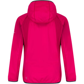 Regatta Shyann III Softshell Jacket Women duchess /seal grey